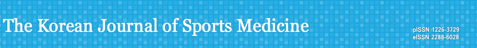Korean Journal of Sports Medicine